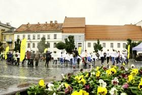 2017.09.21 TAIKOS ŠOKIS ŽEMEI Vilnius
